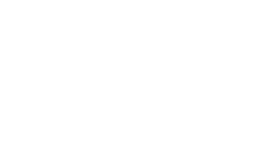 white kinney foundation logo